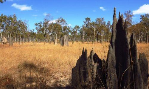 AUSTRALIA / Queensland / Chillagoe / termitiery strzeliste