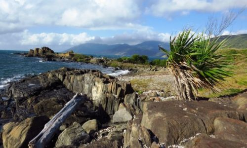 AUSTRALIA / Queensland / Cooktown / Wschodnie Wybrzeże