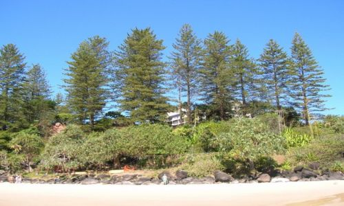 Zdjecie AUSTRALIA / Queensland / Coolangatta / Widok na Green