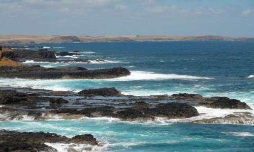 Zdjecie AUSTRALIA / VIC / Phillip Island / wybrzeze wschodnie