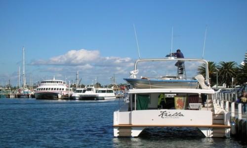 Zdjęcie AUSTRALIA / Victoria / Lake Entrance / Lake Entrance, port