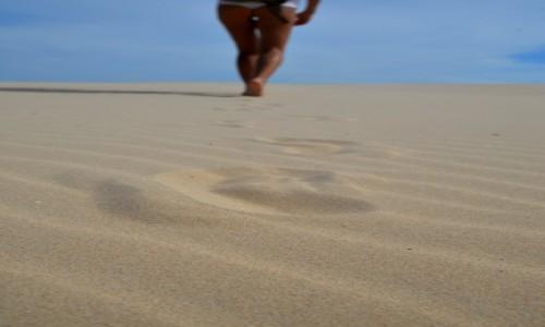 Zdjęcie AUSTRALIA / central / kooragang / sands