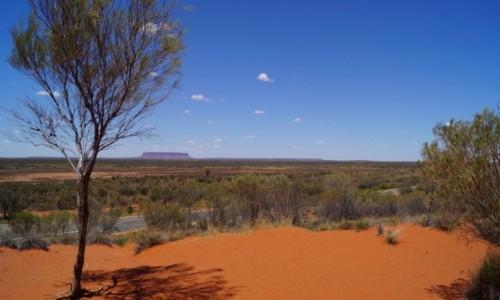Zdjecie AUSTRALIA / Terytorium P�nocne / Uluru / Szczotka do z�b