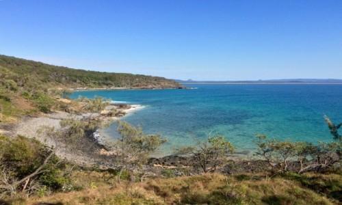 Zdjecie AUSTRALIA / Queensland / Noosa Heads National Park / Noosa