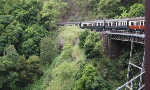 Zdjecie AUSTRALIA / Queensland / Cairns / Pociąg przez deszczowy las