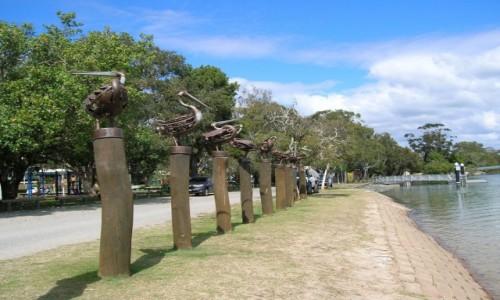 Zdjęcie AUSTRALIA / Qld / Currumbin / Rzezby nad rzeka