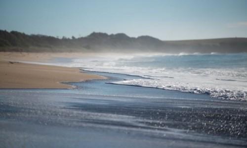 Zdjecie AUSTRALIA / Australia wschodnia / szafirowa zatoka  / na plaży
