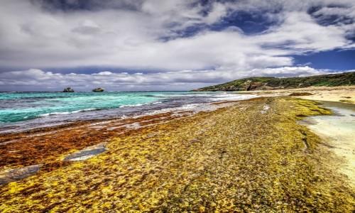 Zdjęcie AUSTRALIA / Australia Zachodnia / Margaret River / Po drugiej stronie świata