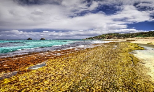 AUSTRALIA / Australia Zachodnia / Margaret River / Po drugiej stronie świata