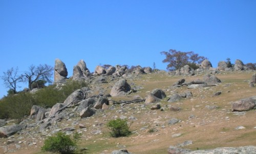 Zdjecie AUSTRALIA / NSW / Na farmie / Skalki na szczycie