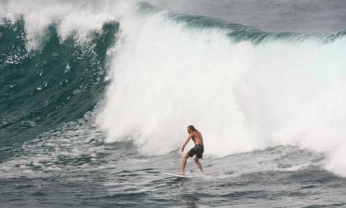 Zdjecie AUSTRALIA / Nowa Południowa Walia / Sydney / Na fali (na Bondi Beach) #2