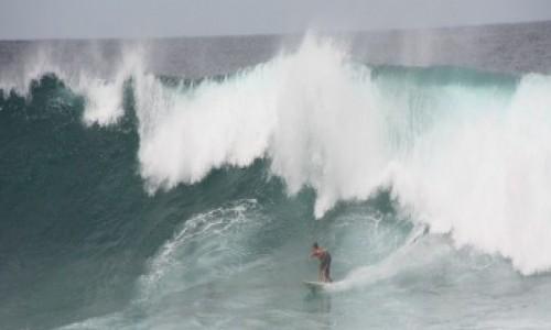 Zdjecie AUSTRALIA / Nowa Południowa Walia / Sydney / Na fali (na Bondi Beach) #3