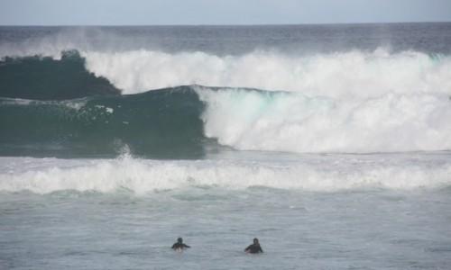 Zdjecie AUSTRALIA / Nowa Południowa Walia / Sydney / Na Bondi Beach #2