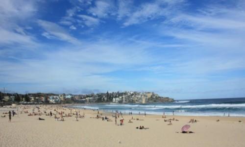 Zdjecie AUSTRALIA / Nowa Południowa Walia / Sydney / Na Bondi Beach #4