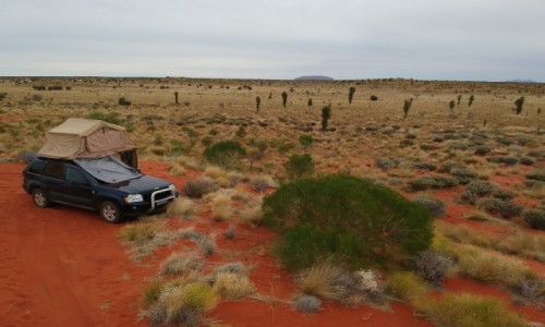 Zdjecie AUSTRALIA / NT / Outback / camping