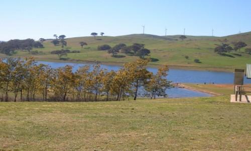 Zdjecie AUSTRALIA / NSW / farma wiatrakow / piknik i farma wiatrakow