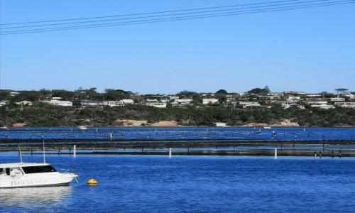 Zdjecie AUSTRALIA / NSW  / Merimbula  / Farma ostryg