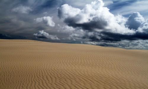 Zdjecie AUSTRALIA / NSW / Stockton Beach /