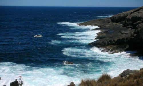 Zdjecie AUSTRALIA / KANGAROO ISLAND / BASEN POLUDNIOWOAUSTRALIJSKI / malenki na wielkich wodach...