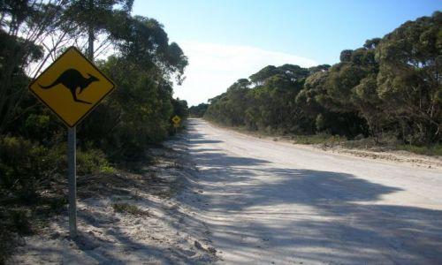 Zdjecie AUSTRALIA / brak / DROGI POZA MIASTEM / obowiazujace znaki drogowe.....