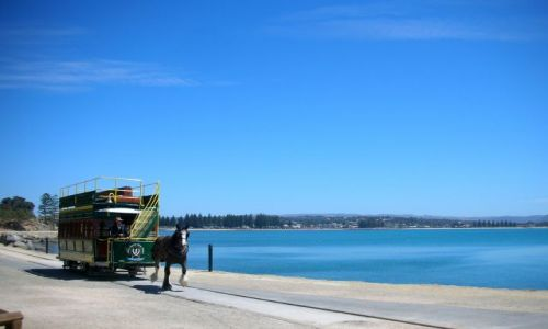 Zdjecie AUSTRALIA / brak / VICTOR HARBOR / tramwajem konnym na wyspe...