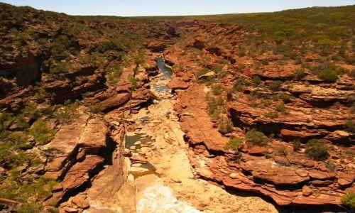 Zdjecie AUSTRALIA / WA / Park Narodowy Kalbarri / Kalbarri