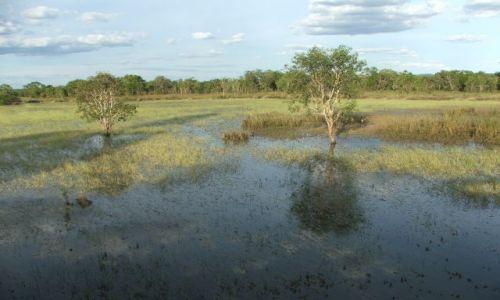 Zdjecie AUSTRALIA / Okolice Darwin / Park Narodowy Kakadu / Park narodowy K