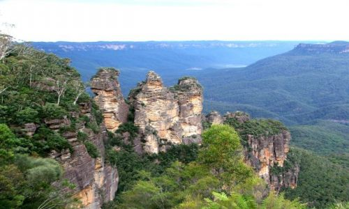 Zdjecie AUSTRALIA / brak / G�ry b��kitne / Lasy eukaliptus