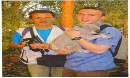 Zdjecie AUSTRALIA / Queensland / Brisbane / z misiem Koala fajnie jest