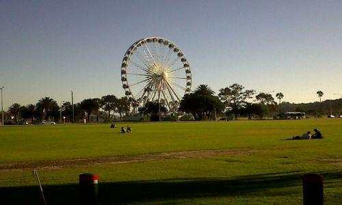 Zdjecie AUSTRALIA / WA / Perth / Oko