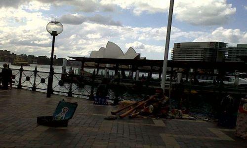 Zdjecie AUSTRALIA / NSW / Sydney / Aborygen w miejskiej dzunglii