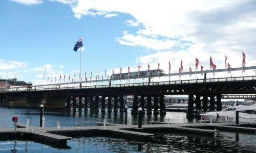 Zdjecie AUSTRALIA / Sydney / Darling Harbour / Sydney Monorail