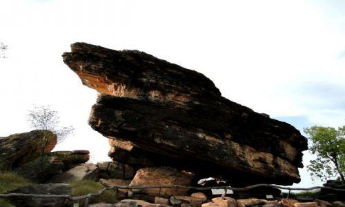 Zdjecie AUSTRALIA / Kakadu NP / Ubirr / W stronę wschodu