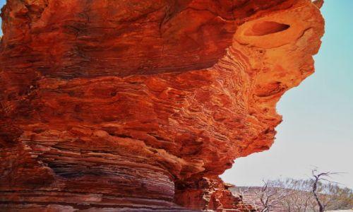 Zdjęcie AUSTRALIA / Australia Zachodnia / Kalbarri NP / Podcień