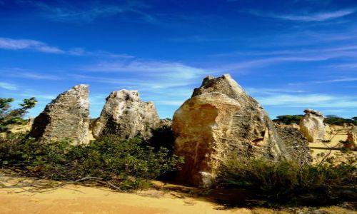 Zdjecie AUSTRALIA / Australia Zachodnia / Nambung NP / Ostańce