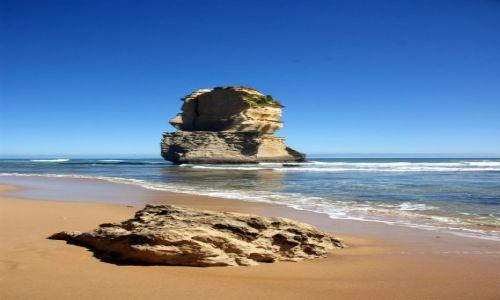Zdjecie AUSTRALIA / Victoria / Great Ocean Road / ..