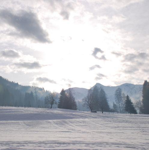 Zdjęcia: Embach, Embach, Widoczek, AUSTRIA