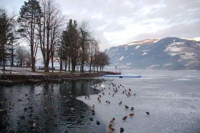 Zdjęcia: Zell Am See, Zell Am See, Jezioro i góry Zell Am See, AUSTRIA