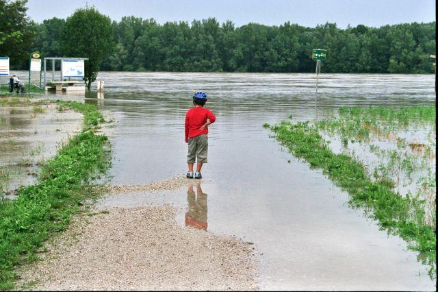Zdjęcia: Dunaj., Ścieżka nad Dunajem, Po deszczu, AUSTRIA