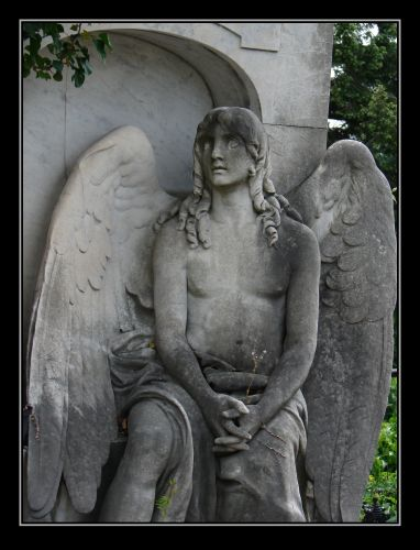 Zdjęcia: Cmentarz Grinzing, Wiedeń, wspomnienia ..., AUSTRIA