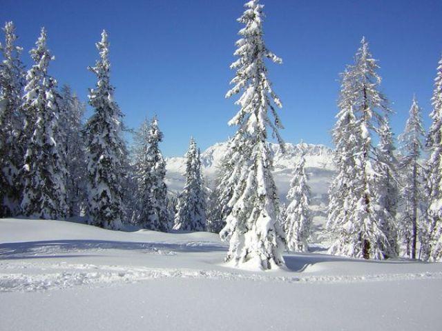 Zdjęcia: Austria, Austria, w krainie śniegu..., AUSTRIA