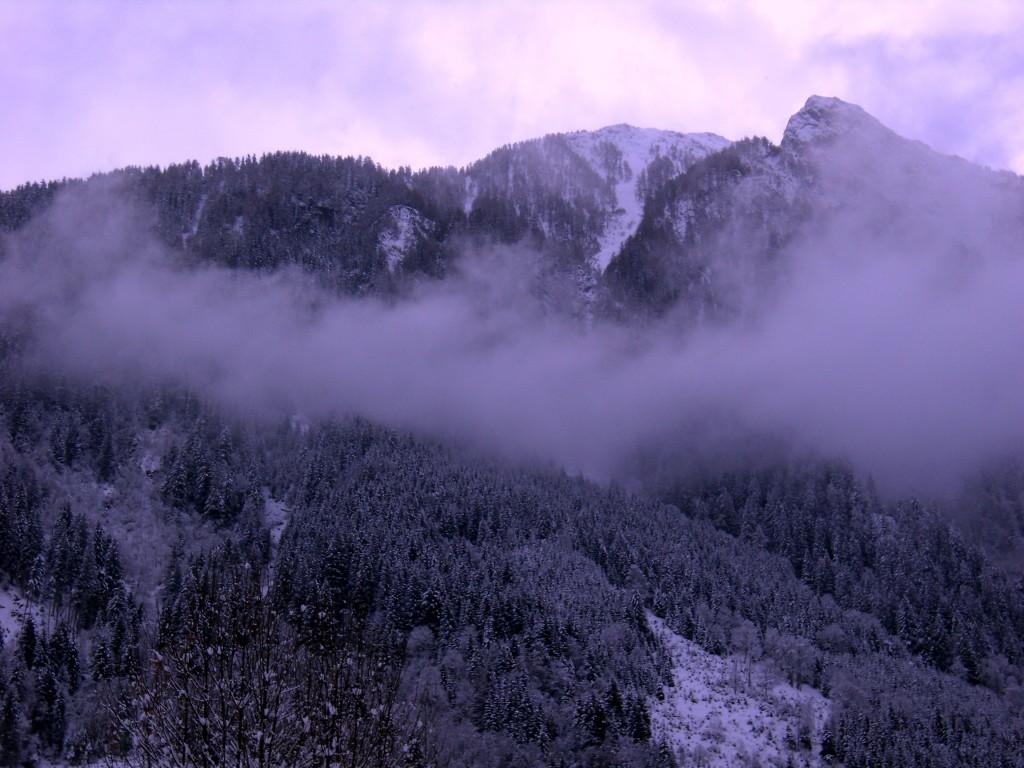Zdjęcia: Embach, Alpy, we mgle, AUSTRIA