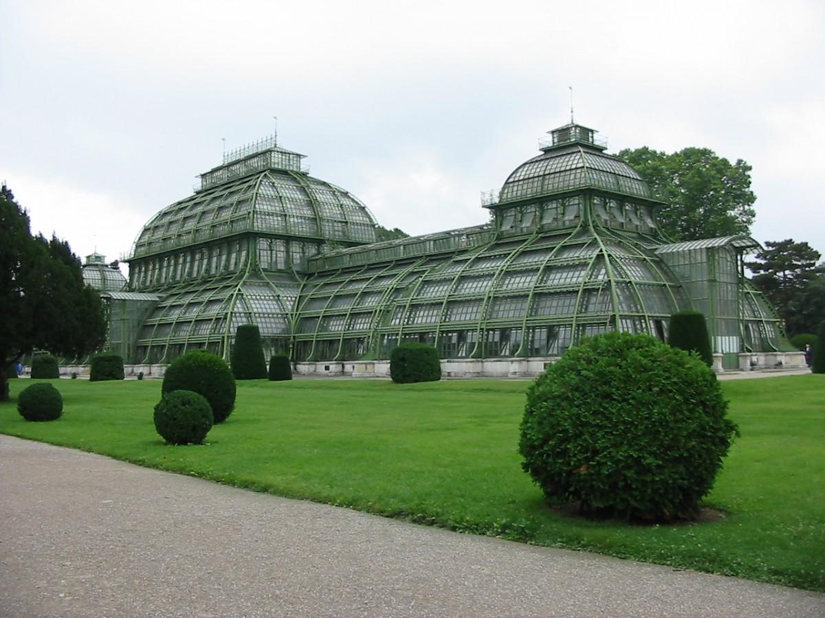 Zdjęcia: Schonbrunn, Wiedeń, Palmiarnia, AUSTRIA