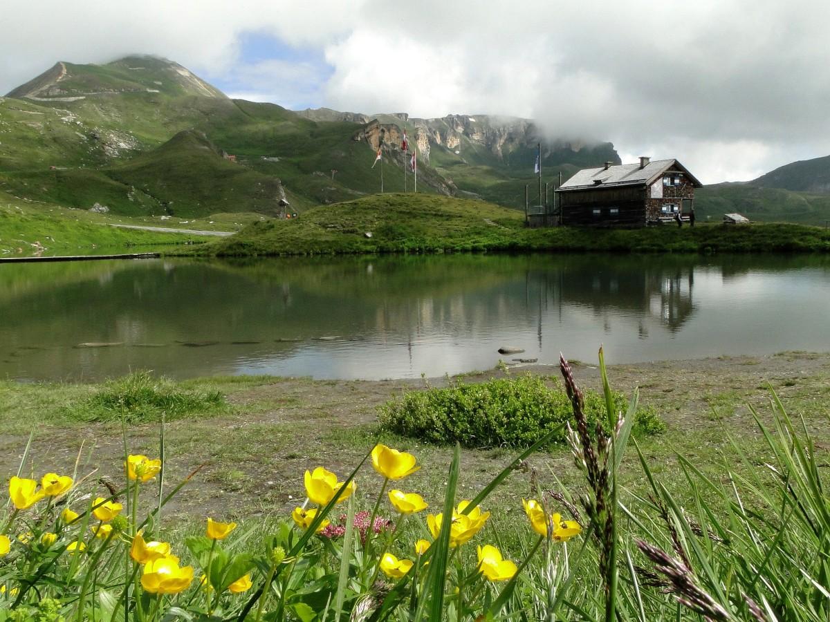 Zdjęcia: Park Narodowy Wysokie Taury, Salzburg, Alpejskie lato, AUSTRIA