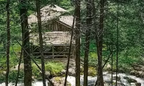 AUSTRIA / Salzburger Land   / Okolice miejscowości Golling, Wodospad Schwarzbachfall zwany też Gollinger Wasserfall / Stary młyn przy potoku widziany z za drzew