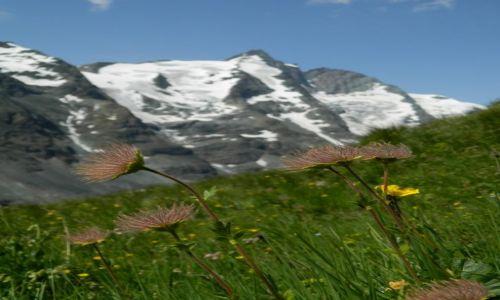 Zdjecie AUSTRIA / Tirol / droga alpejska nr 107 / w oddali Grossglockner