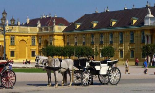 Zdjęcie AUSTRIA / Stolica / Wiedeń / Wiedeń, Pałac Schönbrunn