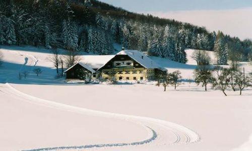 AUSTRIA / Austria / Austria / Agroturystyka w Austrii