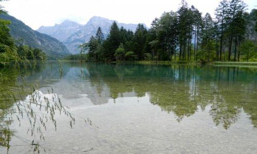 Zdjecie AUSTRIA / GRUNAU IM ALMTAL / ALMSEE / PRZYRODA