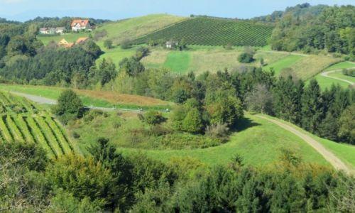 Zdjecie AUSTRIA / Styria / --- / okolice Riegersburga...